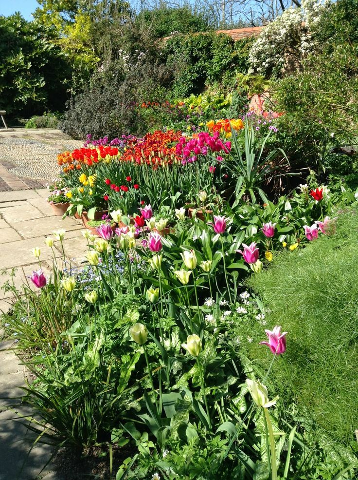 Great Dixter Wall Garden Tulip Pots Display   Photo By Noemi Mercurelli