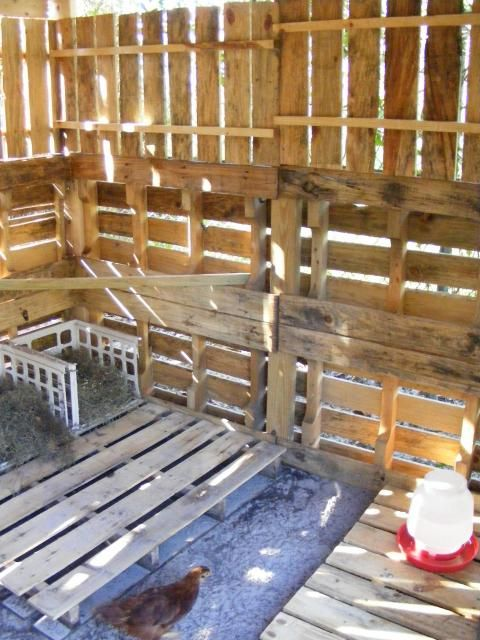 Inside pallet coop..okay so the chances are verrrrry slim I will make a chicken coop, but it could inspire me otherwise.