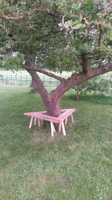 Triangular tree bench - Matt Hatter Green Woodwork