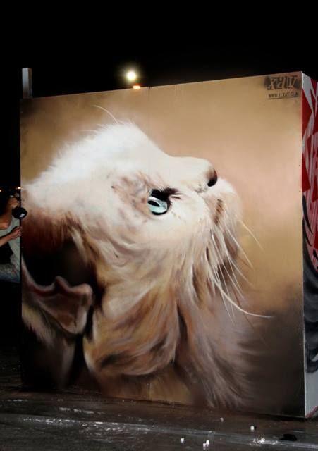 Le dessinateur des rues a l'oeil... PERSAN ! / Chat persan. / Persian cat.