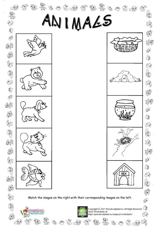 animal worksheet for kids   vfolyam  pinterest  worksheets for  animal worksheet for kids lets match the animals with their living spaces  this aminal worksheet is all free to print and use with your children and