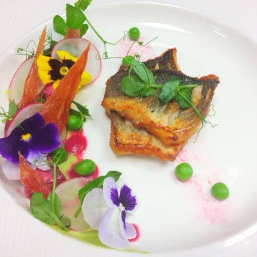 pan fried mackerel in the spring garden