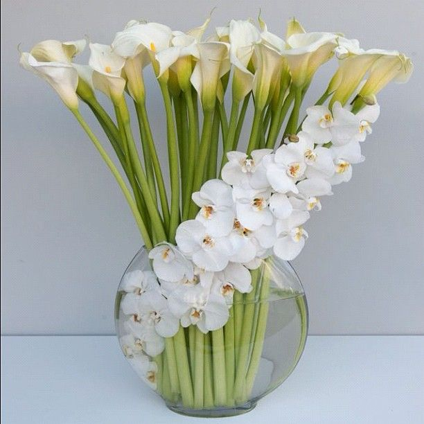 A visually stunning orchid arrangement featuring Calla lilies.