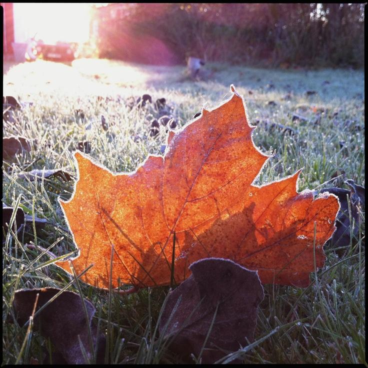 Oktober morning.