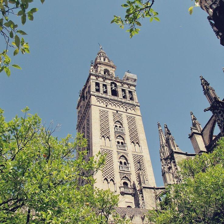 Não importa quantas igrejas e catedrais você já tenha visitado não importa o número de carimbos no seu passaporte: você vai fazer UAU! quando conhecer a Catedral de Sevilha. . . . #espanha #españa #espana #spain #visitspain #sevilha #sevilla #seville #cathedral #giralda #arquitetura #architecture #arquitectura #tower #torre #travel #travelblogger #travelgram #travelphotography #instatravel #wanderlust #travelblog #traveltheworld #travelpics #travelphoto#viagem #turismo…