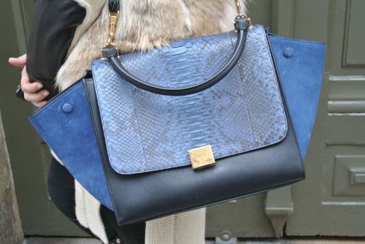 Celine Trapeze Python | Bags \u0026amp; shose | Pinterest | Celine, Colour ...