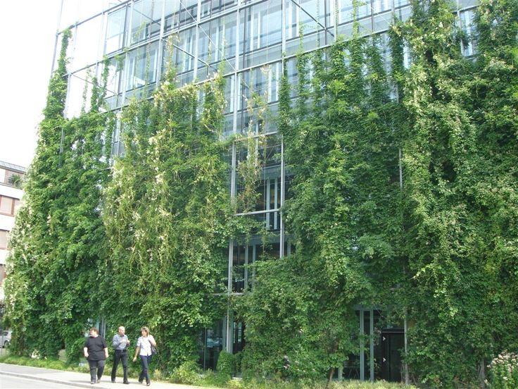 Green Wall Steel Systems by Jakob