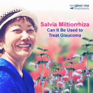 Is #Salvia Miltiorrhiza (Dan Shen) Effective In The Treatment of #Glaucoma? Read more: http://new-glaucoma-treatments.com/is-salvia-miltiorrhiza-dan-shen-effective-in-the-treatment-of-glaucoma/#ixzz3NN2aelww
