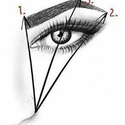 Les points de repère pour des sourcils parfaits - Blog beauté Les Mousquetettes