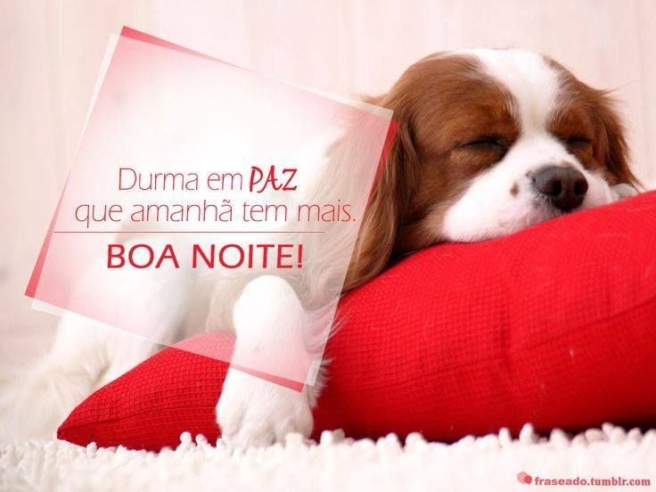 24 Best Images About Boa Noite On Pinterest: 17 Best Images About Boa Noite On Pinterest