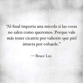 Al final importa una mierda si las cosas no sales como queremos. Porque vale  mas tener cicatriz por valiente que la piel intacta por cobarde. Bruce Lee