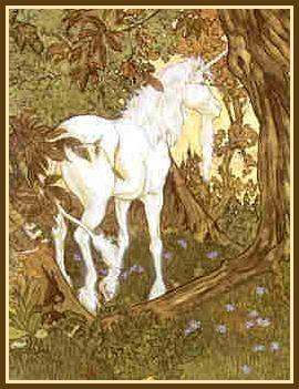 A True Unicorn? - By Michael Hague