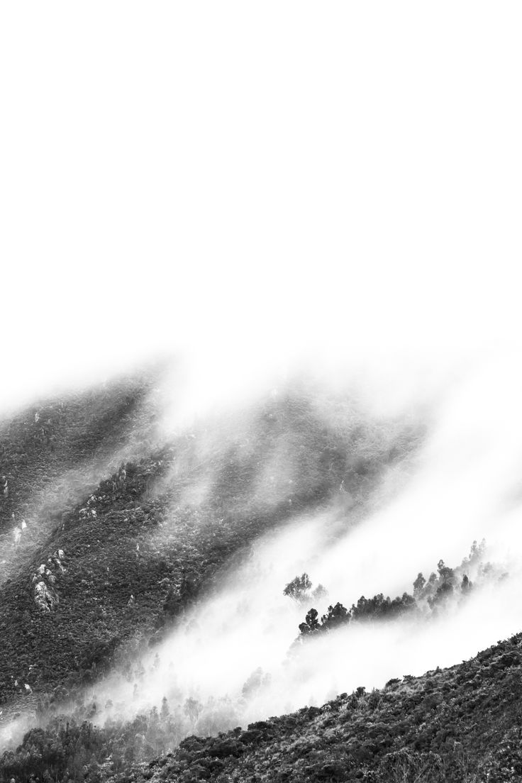 Mountains with Fog - Series: Black and white landscape photography (High Key)  My project is based in landscape photography with the use of foggy to create a different reaction on the people. The use of mist changes the meaning of what people think about landscape, that's one of my purpose.  Hope you like it.