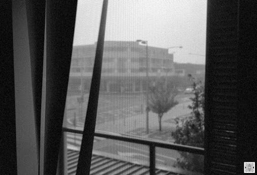 My Canberra - on film mainly Gungahlin, town centre, back in 2015  ... another cold morning ...  Olympus XA, Kodak T-Max 100  www.pavelvrzala.com  #Australia #Canberra #Gungahlin #towncentre #window #view #street #city #Kodak #TMax100 #film #Olympus #XA