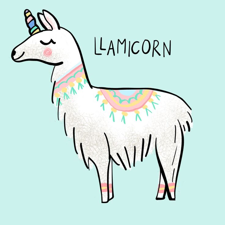 Find and save ideas about Llamas on Pinterest. |See more ideas about Cute llama, Llama pictures and Pics of llamas. Llamas wallpaper, Llama gift, Llama picture, Llama quote, cute llama, home decor, inspirational quote, Be a Llama, christmas gift, quirky gift,
