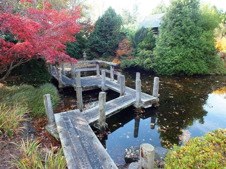 Japanese Gardens - Hobart Photo by George Tims