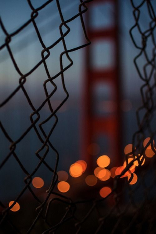 Golden Gate Bridge, S.F. CA.