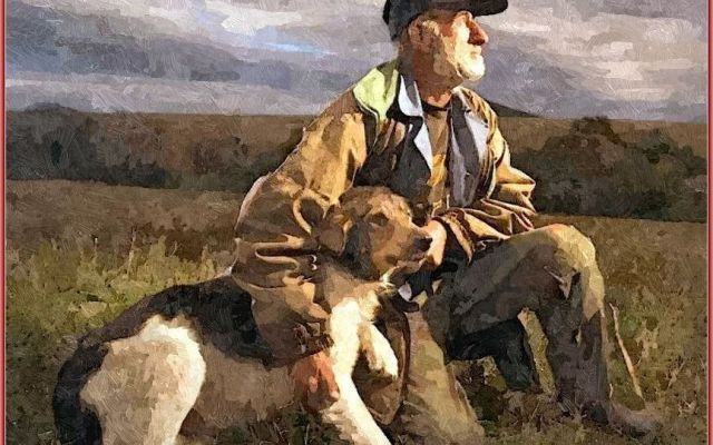 Elaborazioni grafiche - Pablo Neruda: Ode al cane Pablo Neruda, ode al cane - Il cane mi domanda e non rispondo. Salta, corre pei campi e mi domanda senza parlare e i suoi occhi sono due richieste umide, due fiamme liquide che interrogano e io non r #elaborazionigrafiche #odealcane