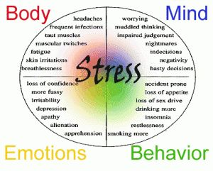 Some of the different factors and causes of stress #stress #stressfactors #selfcatheters