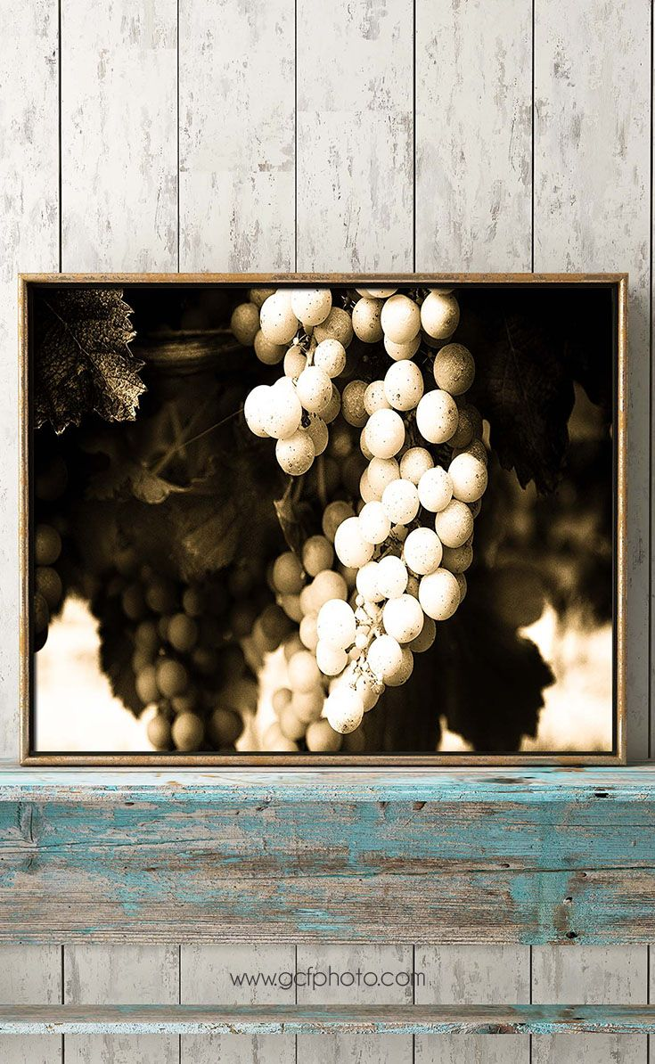 Sepia vineyard print for your wall decor. This high quality art print will add a touch of French elegance to your kitchen or dining room. Click though now to see colour & size options.