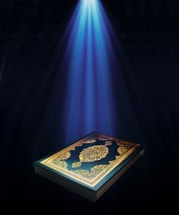 There is a whole chapter about Jinns in the Glorious Quran