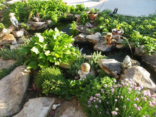 17 best images about aquaponics diy on pinterest for Hydroponics in koi pond