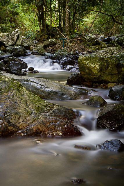 Natural Bridge, Springbrook National Park by dyabolikarl, via Flickr