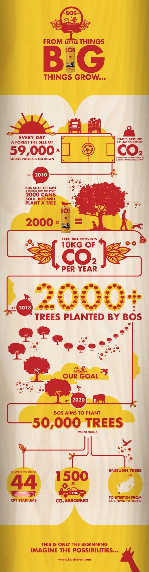 The @Bo Salling Ice Tea infographic done by @CowAfrica. Very cool! #projectza