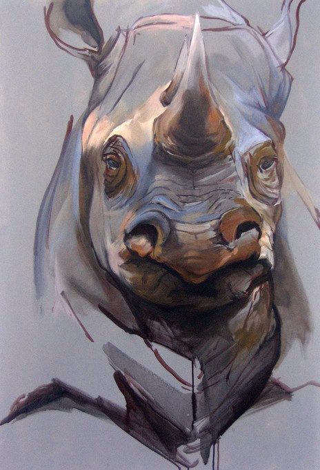 rhino  andrea toniolo's Portfolio