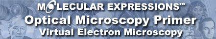 Electron Mucroscope