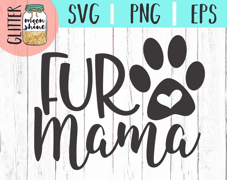 Download 237 best SVG Cutting Files For Cricut and Silhouette ...