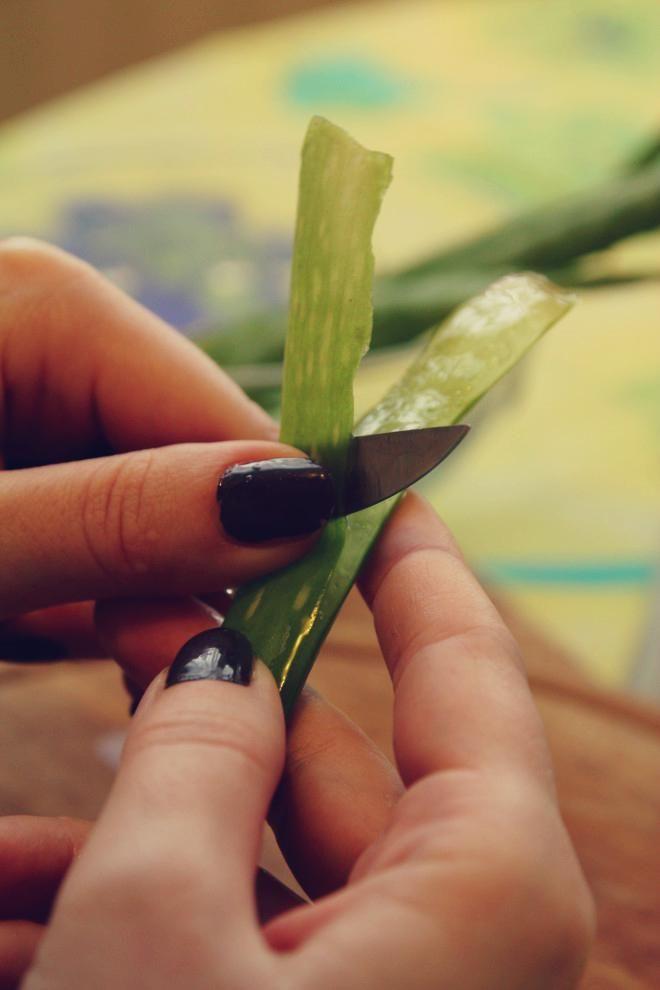 Už dávnejšie som od bratovej priateľky dostala skvelý dar - lekáreň v kvetináči.:) Aloe, ktoré nielen že krásne vyzerá, ale dajú sa z neho robiť úžasné liečivé vecičky, vhodné či na vnútorné, alebo...