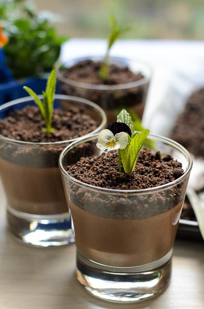 Welcoming spring with smooth decadent Chocolate Mousse with Chocolate dirt.