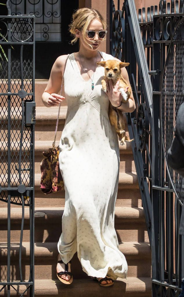 Jennifer Lawrence from The Big Picture: Today's Hot Photos  Pippi the pup! The actress is seen heading out and about with her cute pooch in NYC.