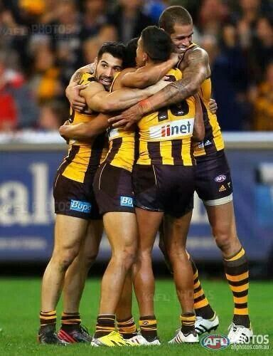 Hawks into the 2013 GF after beating Geelong 102 - 97 in the 1st Preliminary Final