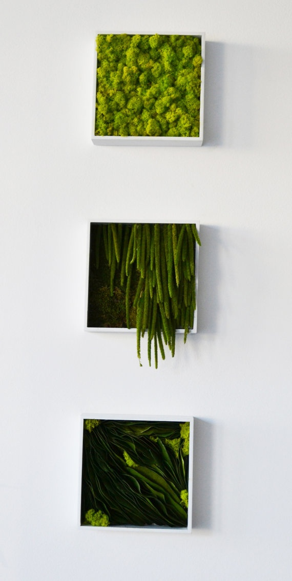 Preserved Greens Wall Plaque by LittleWorldDesign on Etsy, $90.00
