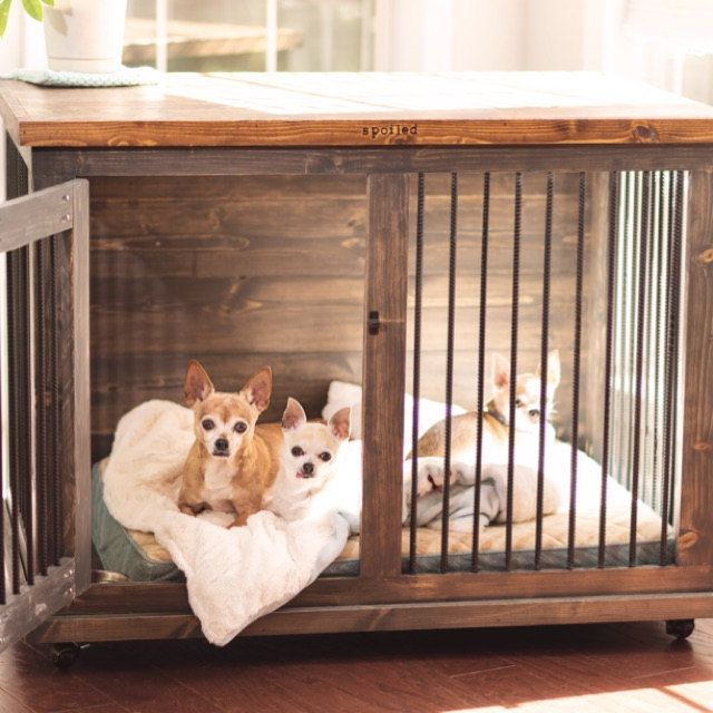 Plans To Build Your Own Wooden Double Dog Kennel Diy Plans Medium Size Diy Dog Kennel Metal Dog Kennel Wooden Dog Kennels