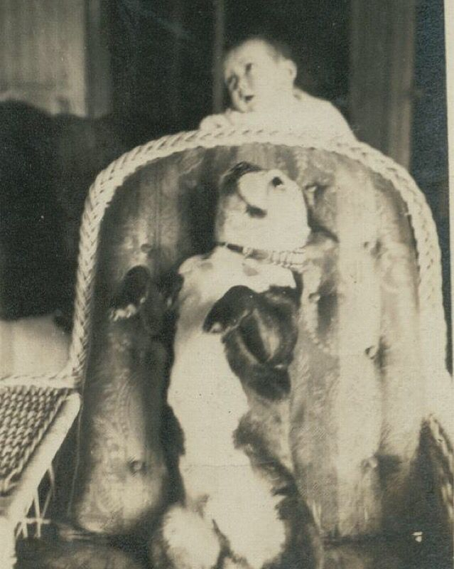The Genealogy Center just added 162 photographs to our Who is a Hoosier?--What and Who makes Indiana great bicentennial album. The  Mary Evengeline Elpers  photograph collection was submitted to us by DeadFred.com. Pictured here are Jean Carroll and Bob the dog, Logansport, IN circa 1920.  To see more photographs check out our Community Album. The Genealogy Center is encouraging all Hoosiers to submit their photographs!