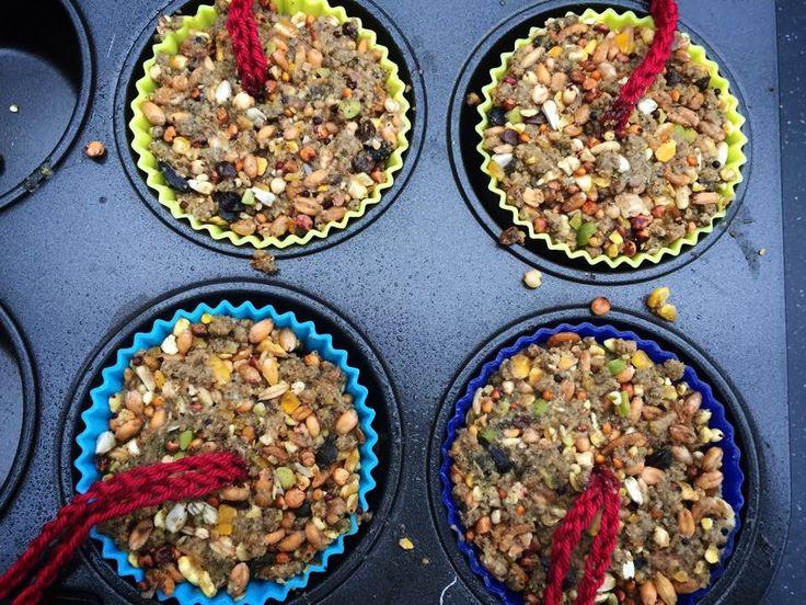 Vogelmuffins voor in de boom. Recept: * vijf blaadjes gelatine * vogelzaad (voor vier muffinbakjes) * kokend water (voor twee muffinbakjes). * vier siliconen muffinvormpjes * bakspray * vier touwtjes Week de gelatine in koud water. Knijp de bladen uit, doe het kokende water en vogelzaad erbij. Roeren. Laten staan tot al het water is opgenomen. Spray de vormpjes in met bakspray. Vul de vormpjes half. Touwtje erin, verder vullen. Dag laten uitharden.