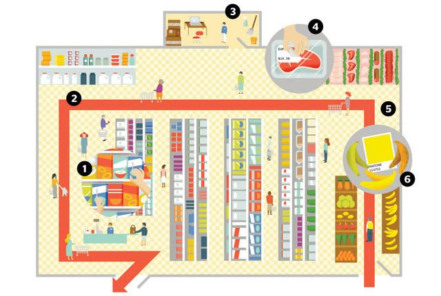 supermarket design layout Store design and layout tells a customer what the store is all about and it is very strong tool in the hands of the retailer for communicating and creating the image of the store in the mind of the customers.