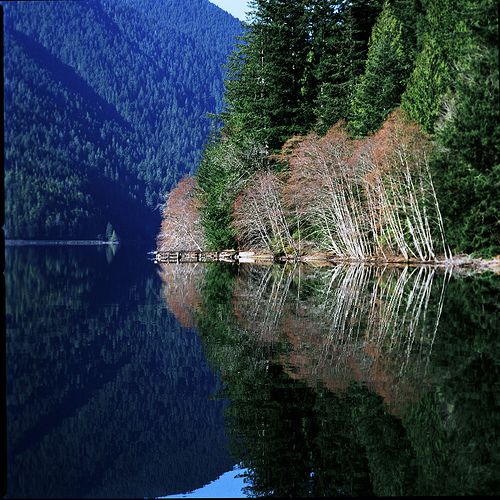 17 Best Images About Lake Crescent On Pinterest
