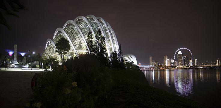 https://flic.kr/p/WbLppf | Singapore | Singapore. Gardens by the Bay.