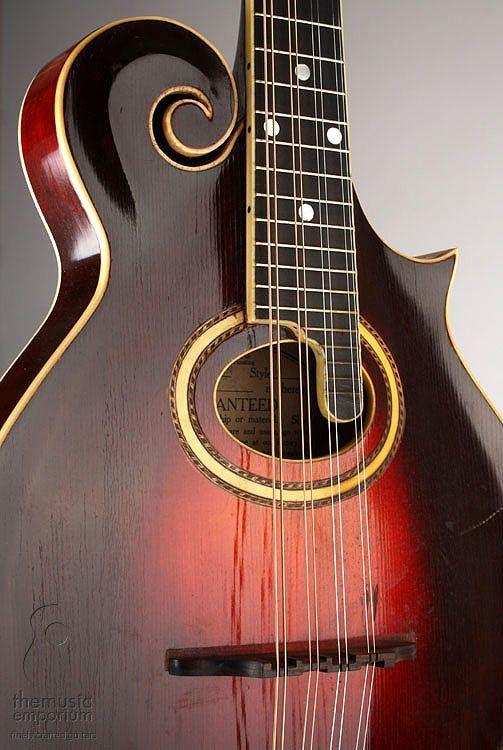 17 Best Mandolins Images On Pinterest Mandolin Music Instruments