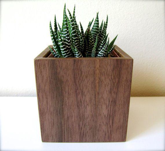 Desktop planter 3 plant holder for a succulent cactus for Wooden cactus planter
