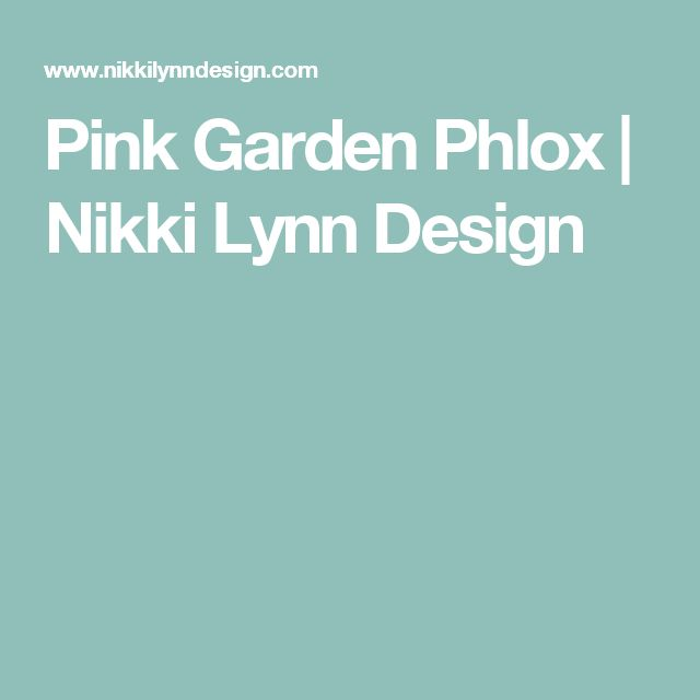 Pink Garden Phlox | Nikki Lynn Design