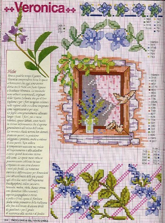 Gallery.ru / Фото #26 - Ботаника-цветы - irislena