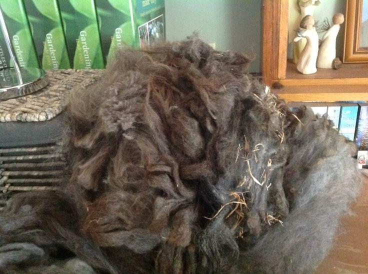 Unprocessed fleece.