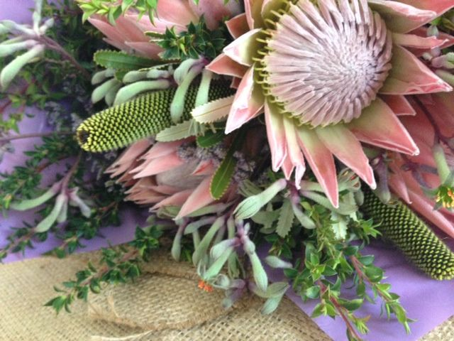 Proteas, Native foliages & Silver paw create great texture