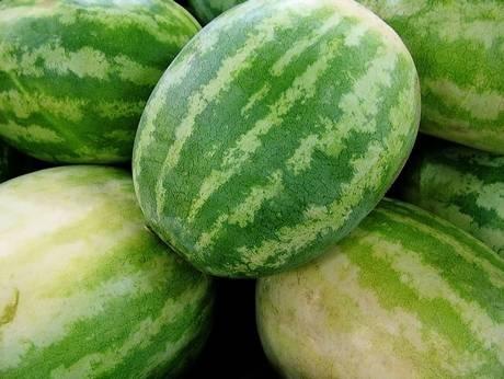 Water melonHealth Info, Food And Drink, Foodgood Drinks, Nature Diuretic, Cleaning Food, Healthy Food, Health Foods, Better Health, Healthy Living