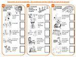Cahier de réussite en accord avec les nouveaux programmes - Vivi de class'